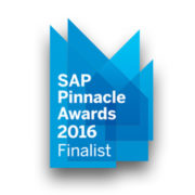 Finalistas SAP Pinnacle Award 2016 preview